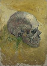 van Gogh, Teschio   Schedel   Crâne   Skull