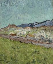 van Gogh, Veduta delle Alpilles | Gezicht op de Alpilles | Vue des Alpilles | View of the Alpilles