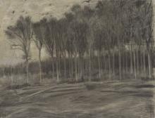van Gogh, Veduta di un bosco | Bosgezicht | Vue d'un bois | View of a wood