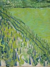 van Gogh, Vigneti ad Auvers [dettaglio 1]