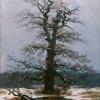 Caspar David Friedrich (Greifswald 1774 – 1840 Dresden): Eiche im Schnee (Quercia nella neve), senza data, Olio su tela, cm. 44 x 34,5, Köln, Wallraf.Richartz-Museum