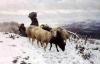 Stefano Bruzzi, Ritorno all'ovile, XIX secolo, Dipinto, Olio su tela, Collezione privata