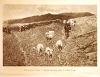 Achille Formis, Armonie montanine