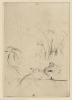 Morisot, Anatre.png