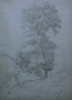 Jean Achille Benouville, Grandi alberi | Tall vertical trees