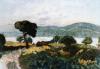Bonnard, Paesaggio di Saint Tropez.png