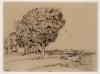 van Gogh, Strada campestre   Route de campagne   Country road   Landstraße